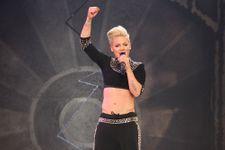 Pink Slams Her Body Critics On Twitter
