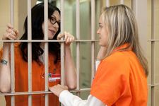 """Laura Prepon To Appear In Every Episode Of """"OITNB"""" Season 3"""