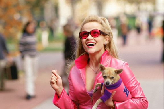 Cast of Legally Blonde: Where Are They Now?