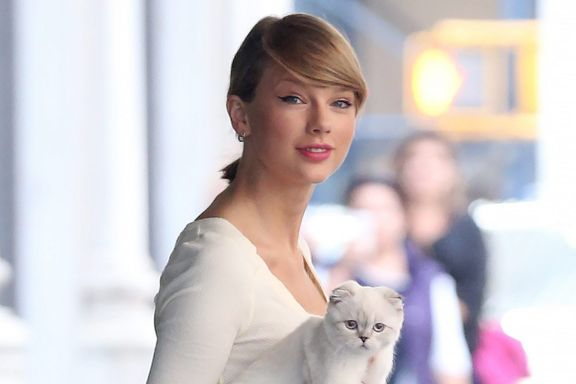 Cute Alert: Taylor Swift's 15 Most Adorable Cat Photos