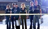 Cast Of CSI: How Much Are They Worth Now?