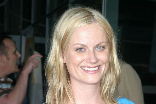 Things You Might Not Know About Amy Poehler