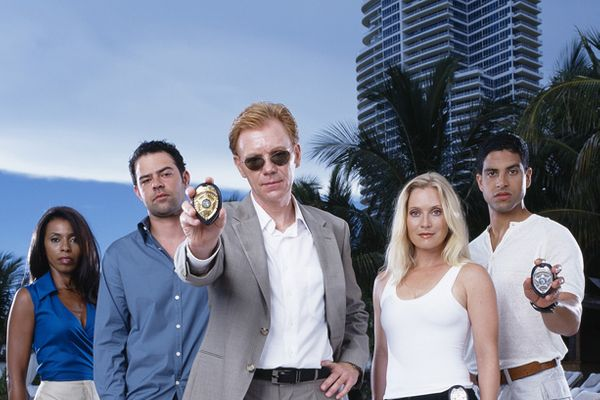 Cast Of CSI: Miami: How Much Are They Worth Now?