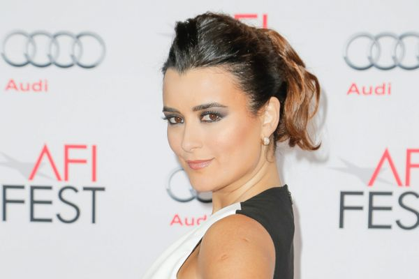 9 Things You Didn't Know About Former NCIS Star Cote De Pablo