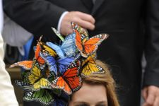 The Most Outrageous Royal Wedding Hats Of All Time