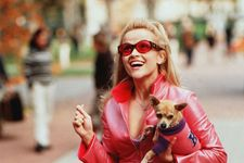 Legally Blonde 3 Starring Reese Witherspoon Is Reportedly In The Works