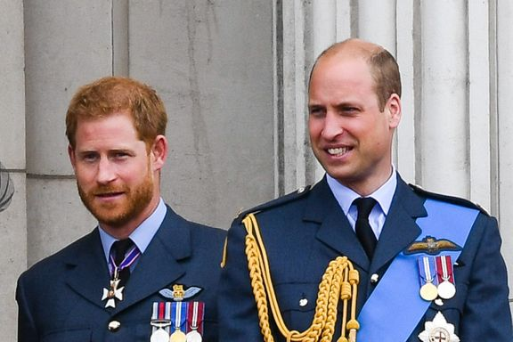 Prince Harry And Prince William Divide Princess Diana's Memorial Fund
