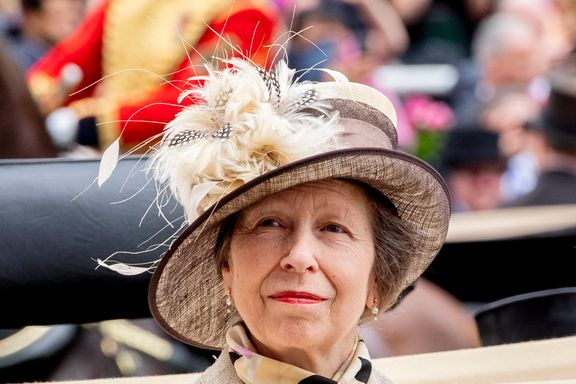 Princess Anne Urges Young Generation Royals To 'Go Back To Basics'