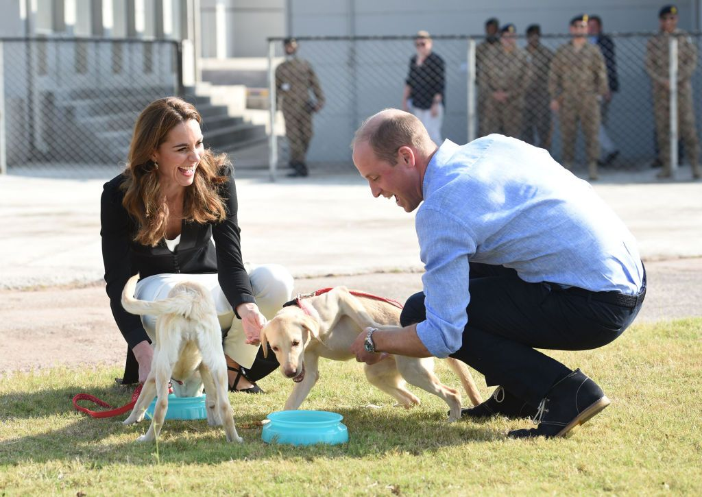 Prince William And Kate Middleton Mourn The Passing Of Family Dog Lupo - Fame10