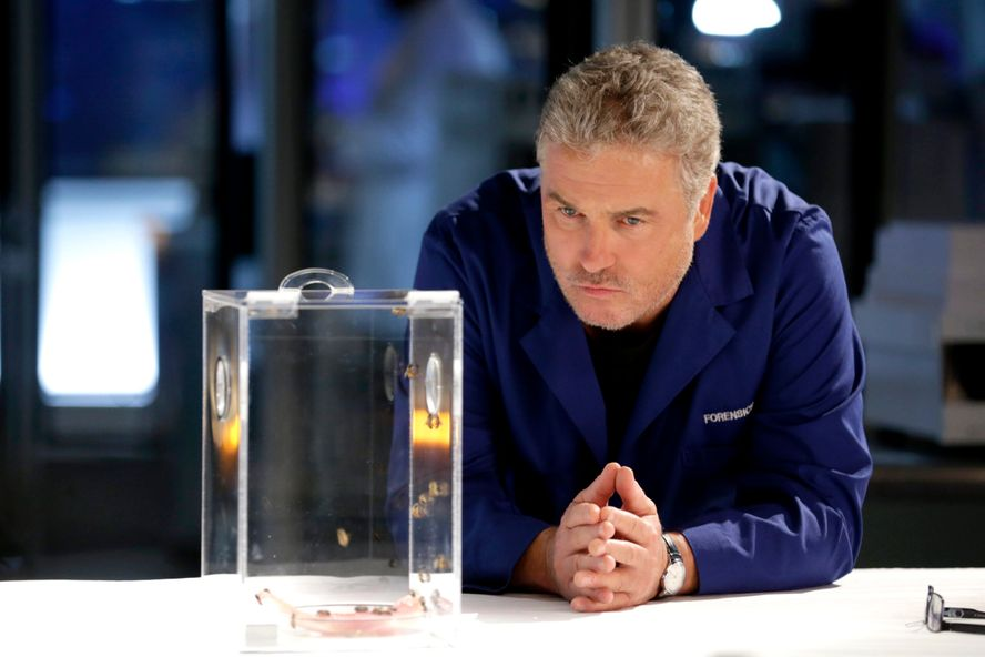 CSI: Vegas Star William Petersen Hospitalized Due To Exhaustion On Set